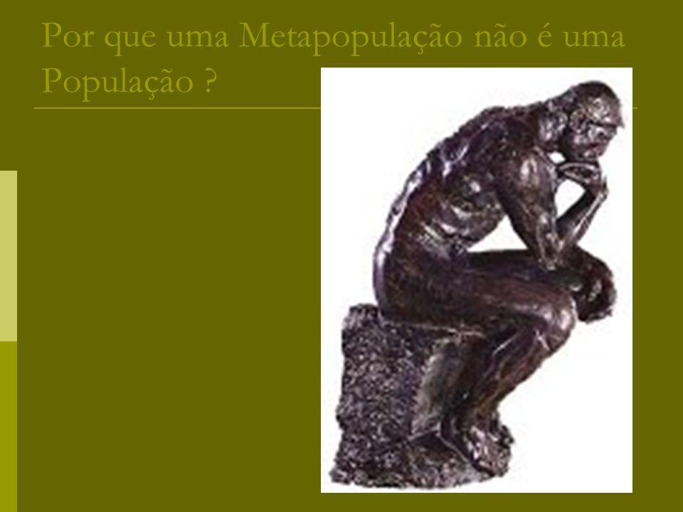 Por que uma Metapopulação não é uma População ?
