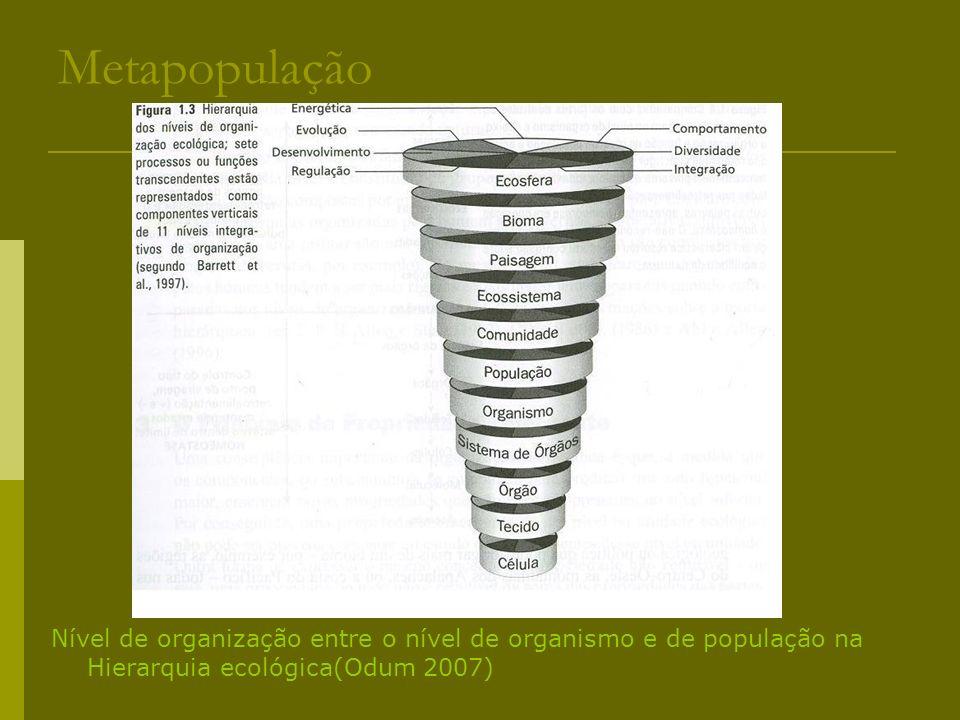 Metapopulação Nível de organização entre o nível de organismo e de população na Hierarquia ecológica(Odum 2007)