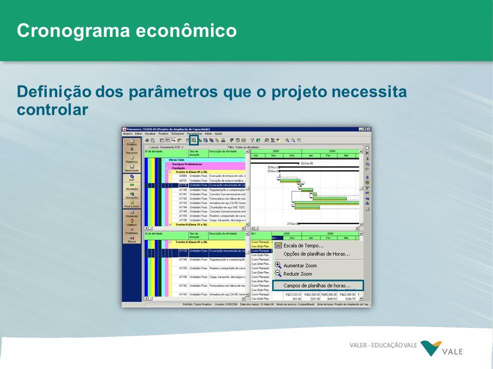 Definição dos parâmetros que o projeto necessita controlar Cronograma econômico