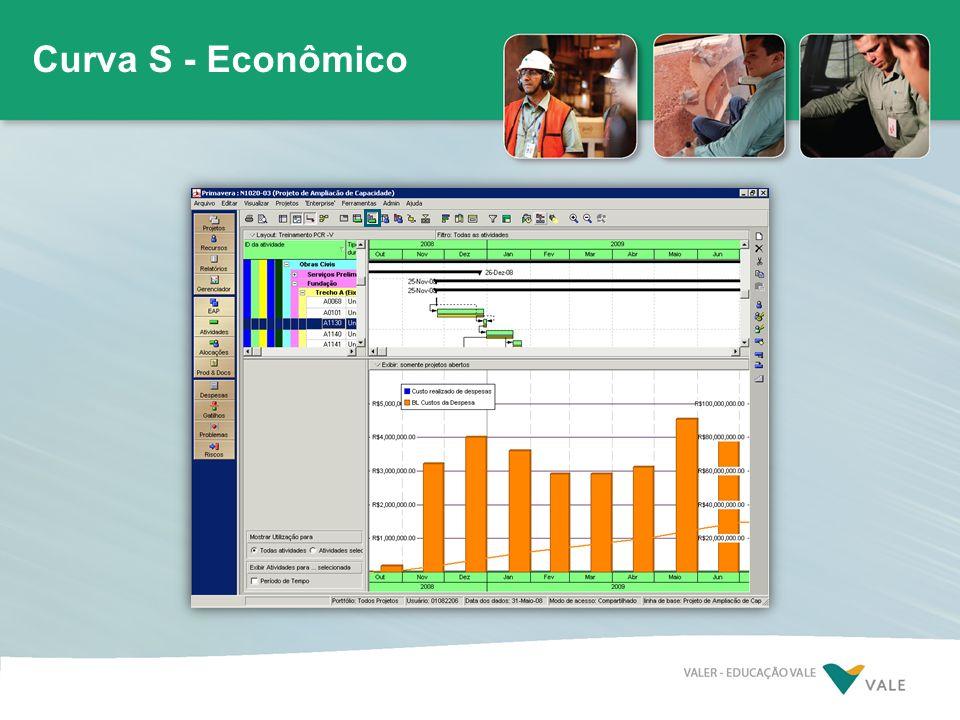 Curva S - Econômico