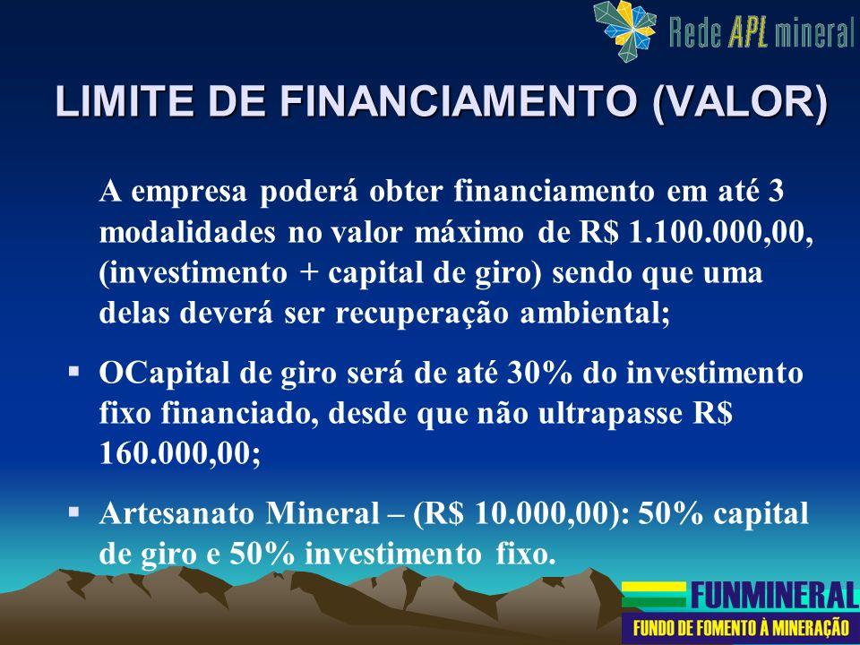 A empresa poderá obter financiamento em até 3 modalidades no valor máximo de R$ 1.100.000,00, (investimento + capital de giro) sendo que uma delas dev