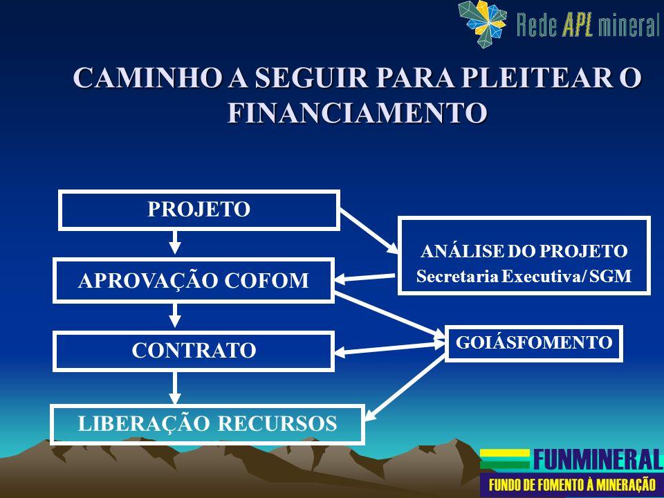 CAMINHO A SEGUIR PARA PLEITEAR O FINANCIAMENTO PROJETO APROVAÇÃO COFOM ANÁLISE DO PROJETO Secretaria Executiva/ SGM CONTRATO GOIÁSFOMENTO LIBERAÇÃO RE