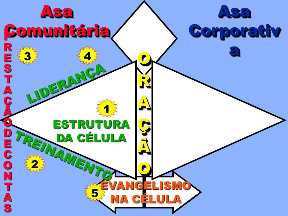 31 LIDERANÇA 42 ORAÇÃOORAÇÃO TREINAMENTOAsa Asa AsaComunitáriaAsaComunitária PRESTAÇÃOPRESTAÇÃODEDECONTASCONTASPRESTAÇÃOPRESTAÇÃODEDECONTASCONTAS ESTR