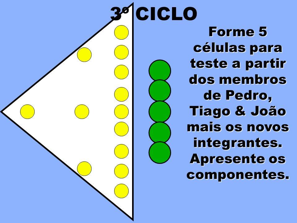 Forme 5 células para teste a partir dos membros de Pedro, Tiago & João mais os novos integrantes. 3º CICLO
