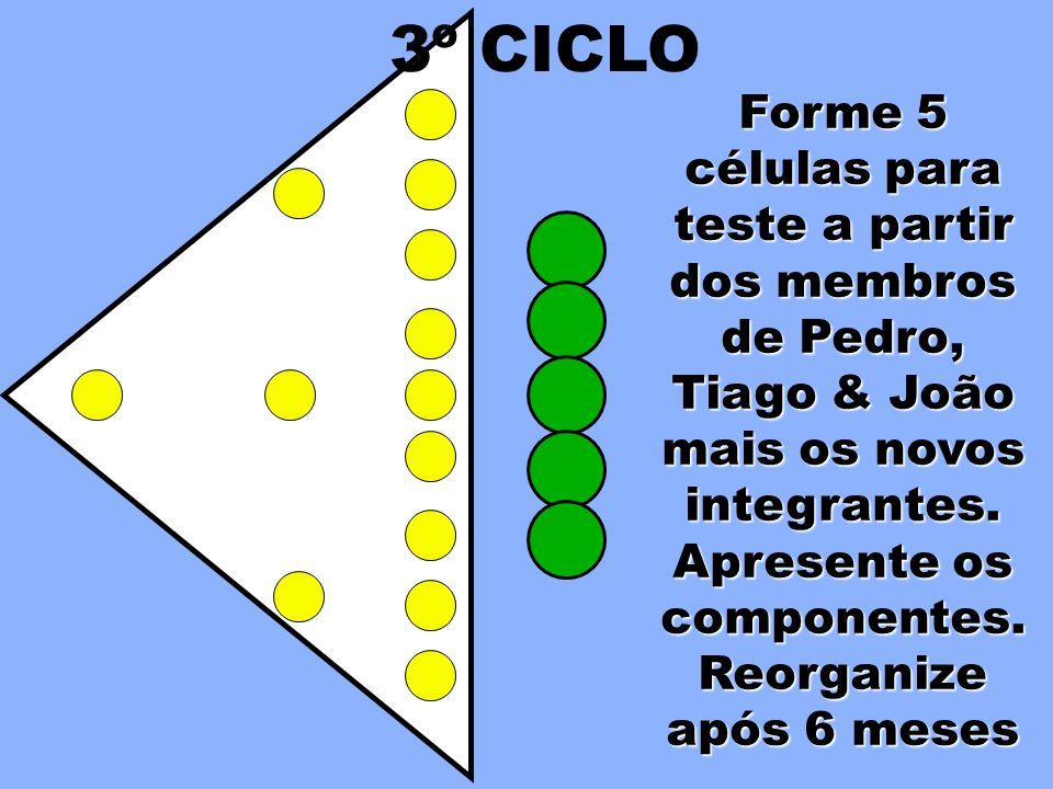 Forme 5 células para teste a partir dos membros de Pedro, Tiago & João mais os novos integrantes. Apresente os componentes. 3º CICLO