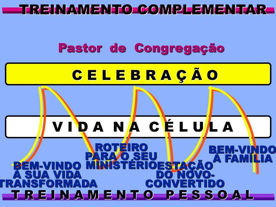 BEM-VINDO À FAMÍLIA ESTAÇÃO DO NOVO- CONVERTIDO ROTEIRO PARA O SEU MINISTÉRIO BEM-VINDO À SUA VIDA TRANSFORMADA C E L E B R A Ç Ã O TREINAMENTO COMPLE