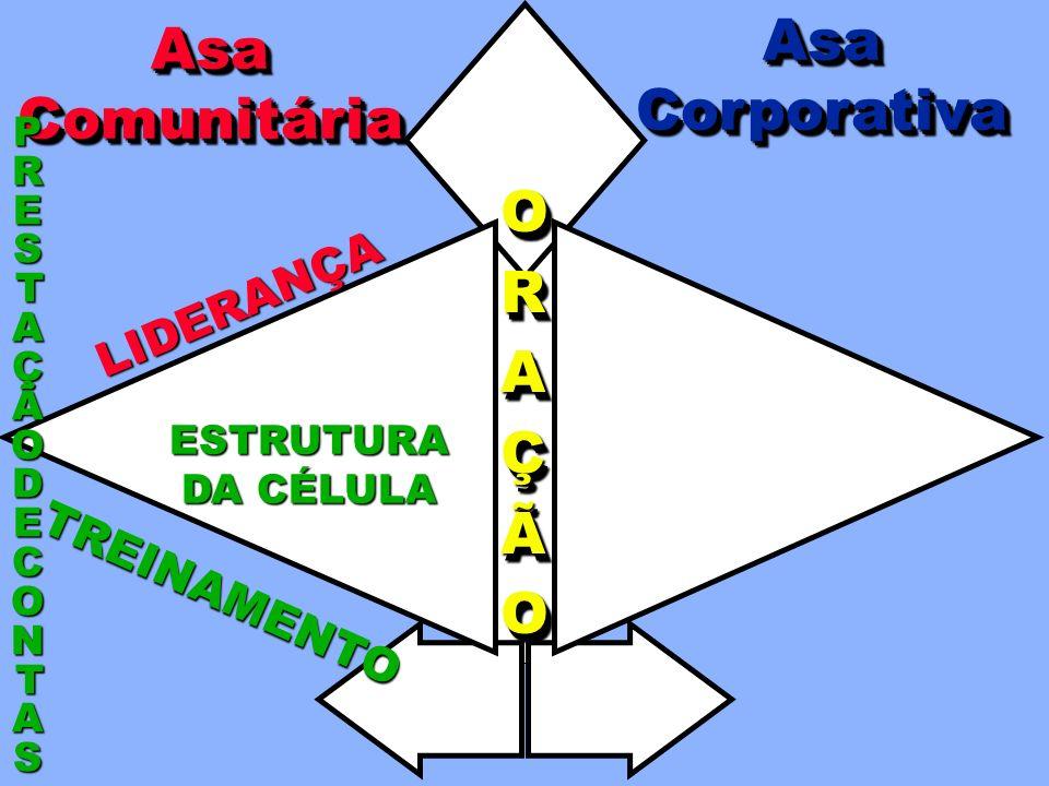 IMPORTÂNCIA DA PRESTAÇÃO DE CONTAS Ponto inicial da vida do CorpoPonto inicial da vida do Corpo Auxilia o Líder de célulaAuxilia o Líder de célula For