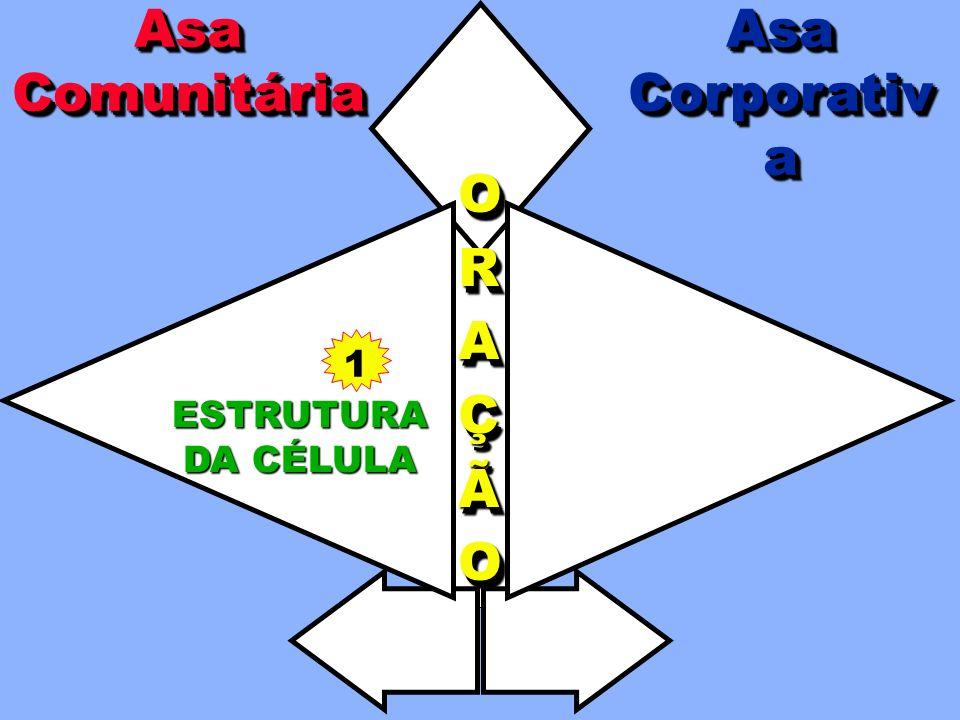 COORDENAÇÃO TODATODAAAIGREJAIGREJATODATODAAAIGREJAIGREJAA A AAPOIOPOIOAAPOIOPOIO EXPEXPAANNSSÃÃOOEXPEXPAANNSSÃÃOOANSÃO AsaCorporativaAsaCorporativaAsaComunitáriaAsaComunitária ORAÇÃOORAÇÃO EVANGELISMO NA CÉLULA LIDERANÇA PRESTAÇÃOPRESTAÇÃODEDECONTASCONTASPRESTAÇÃOPRESTAÇÃODEDECONTASCONTAS TREINAMENTO ESTRUTURA DA CÉLULA EVANGELISMOCORPORATIVO A Asa Corporativa apóia a Asa Comunitária