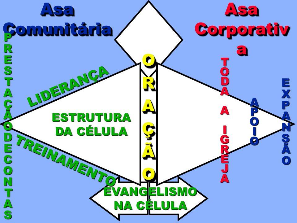 Ministério Lucas 4.14-21 Treinamento 2 Timóteo 2.2 Missões Mateus 28.20 SISTEMA DE APOIO