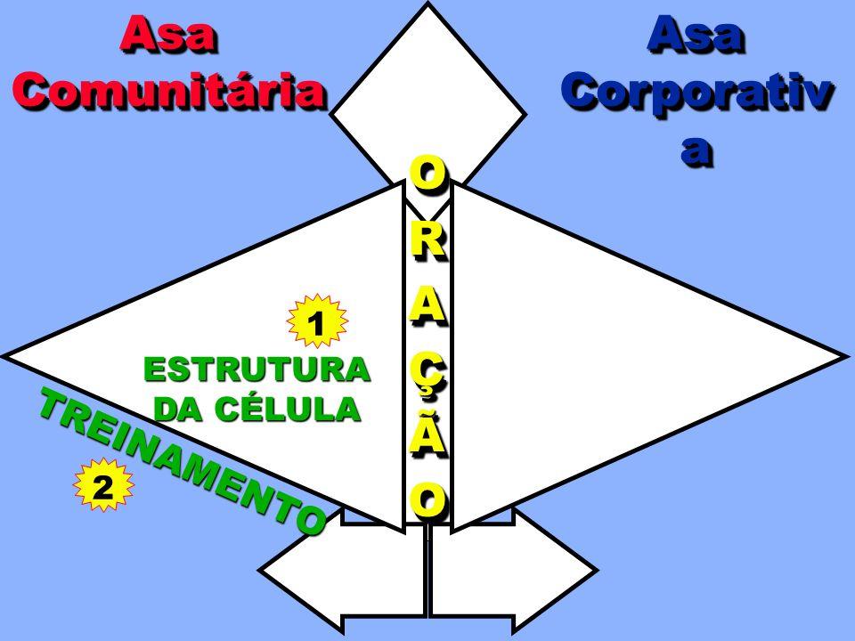 COORDENAÇÃO TODATODAAAIGREJAIGREJATODATODAAAIGREJAIGREJAA A AAPOIOPOIOAAPOIOPOIO EXPEXPAANNSSÃÃOOEXPEXPAANNSSÃÃOOANSÃO ORAÇÃOORAÇÃO EVANGELISMO NA CÉLULA LIDERANÇA PRESTAÇÃOPRESTAÇÃODEDECONTASCONTASPRESTAÇÃOPRESTAÇÃODEDECONTASCONTAS TREINAMENTO AsaCorporativaAsaCorporativaAsaComunitáriaAsaComunitária ESTRUTURA DA CÉLULA EVANGELISMOCORPORATIVO A Asa Comunitária apóia a Asa Corporativa