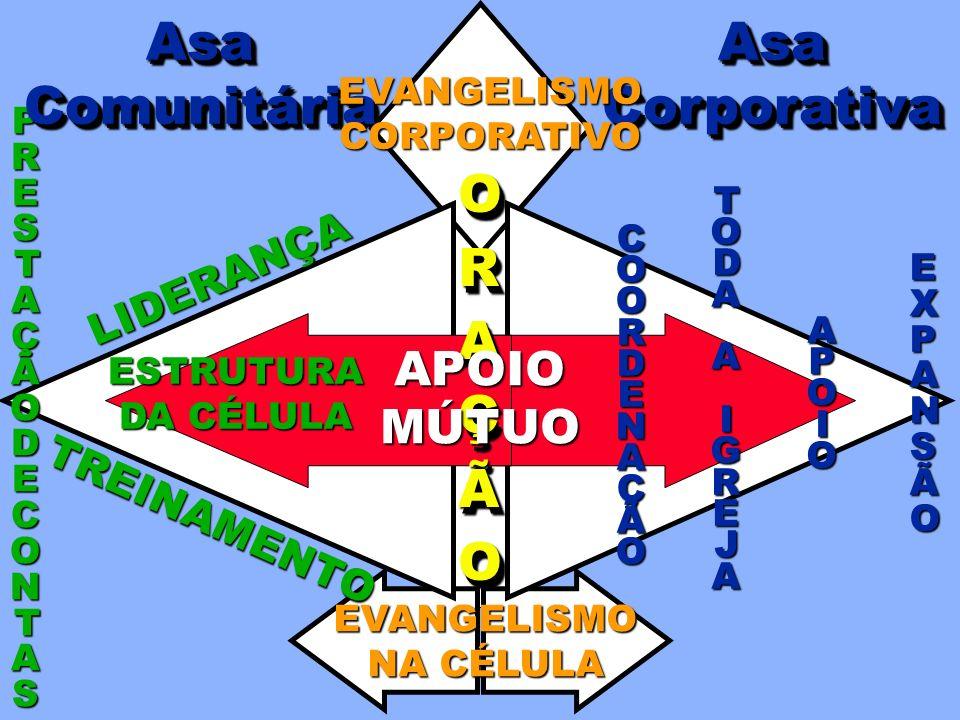 COORDENAÇÃO TODATODAAAIGREJAIGREJATODATODAAAIGREJAIGREJAA A AAPOIOPOIOAAPOIOPOIO EXPEXPAANNSSÃÃOOEXPEXPAANNSSÃÃOOANSÃO ORAÇÃOORAÇÃO EVANGELISMO NA CÉL