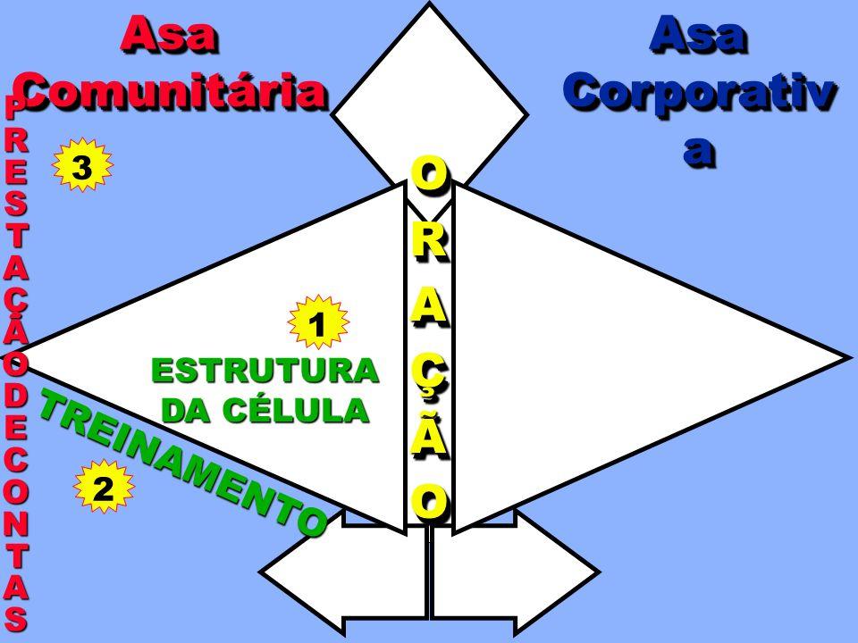 COORDENAÇÃO TODATODAAAIGREJAIGREJATODATODAAAIGREJAIGREJAA A AAPOIOPOIOAAPOIOPOIO EXPEXPAANNSSÃÃOOEXPEXPAANNSSÃÃOOANSÃO ORAÇÃOORAÇÃO EVANGELISMO NA CÉLULA LIDERANÇA PRESTAÇÃOPRESTAÇÃODEDECONTASCONTASPRESTAÇÃOPRESTAÇÃODEDECONTASCONTAS TREINAMENTO APOIOMÚTUO AsaCorporativaAsaCorporativaAsaComunitáriaAsaComunitária ESTRUTURA DA CÉLULA EVANGELISMOCORPORATIVO