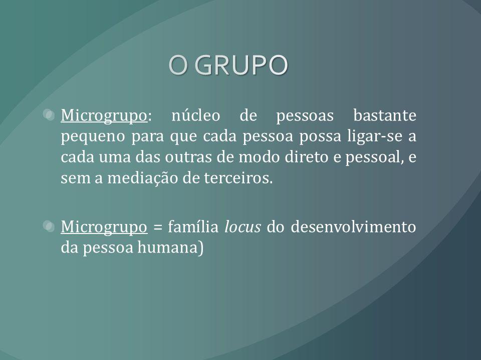 Microgrupo: núcleo de pessoas bastante pequeno para que cada pessoa possa ligar-se a cada uma das outras de modo direto e pessoal, e sem a mediação de