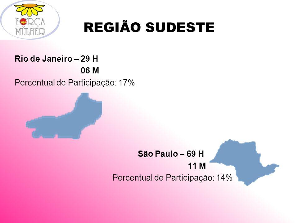 REGIÃO SUDESTE Rio de Janeiro – 29 H 06 M Percentual de Participação: 17% São Paulo – 69 H 11 M Percentual de Participação: 14%