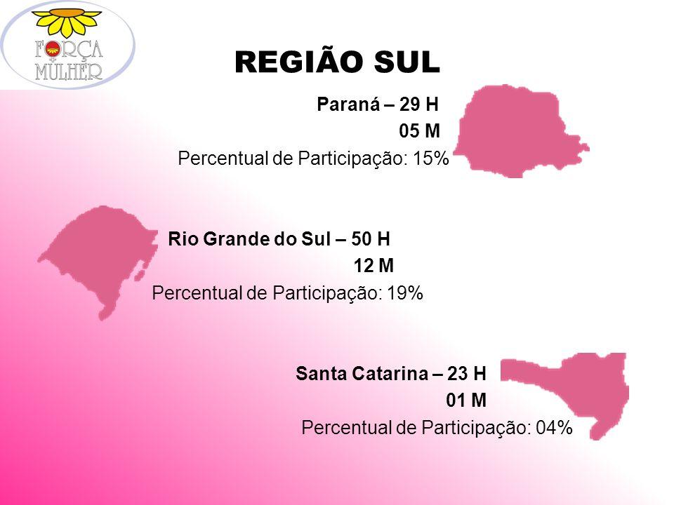 REGIÃO SUL Paraná – 29 H 05 M Percentual de Participação: 15% Rio Grande do Sul – 50 H 12 M Percentual de Participação: 19% Santa Catarina – 23 H 01 M