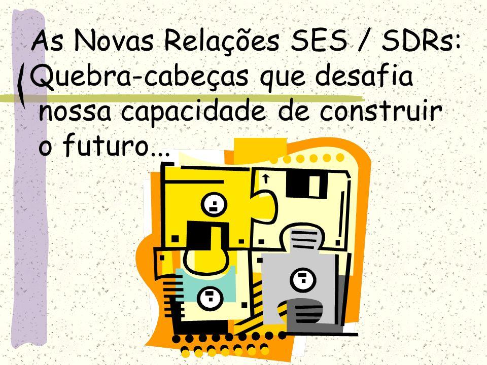 As Novas Relações SES / SDRs: Quebra-cabeças que desafia nossa capacidade de construir o futuro...