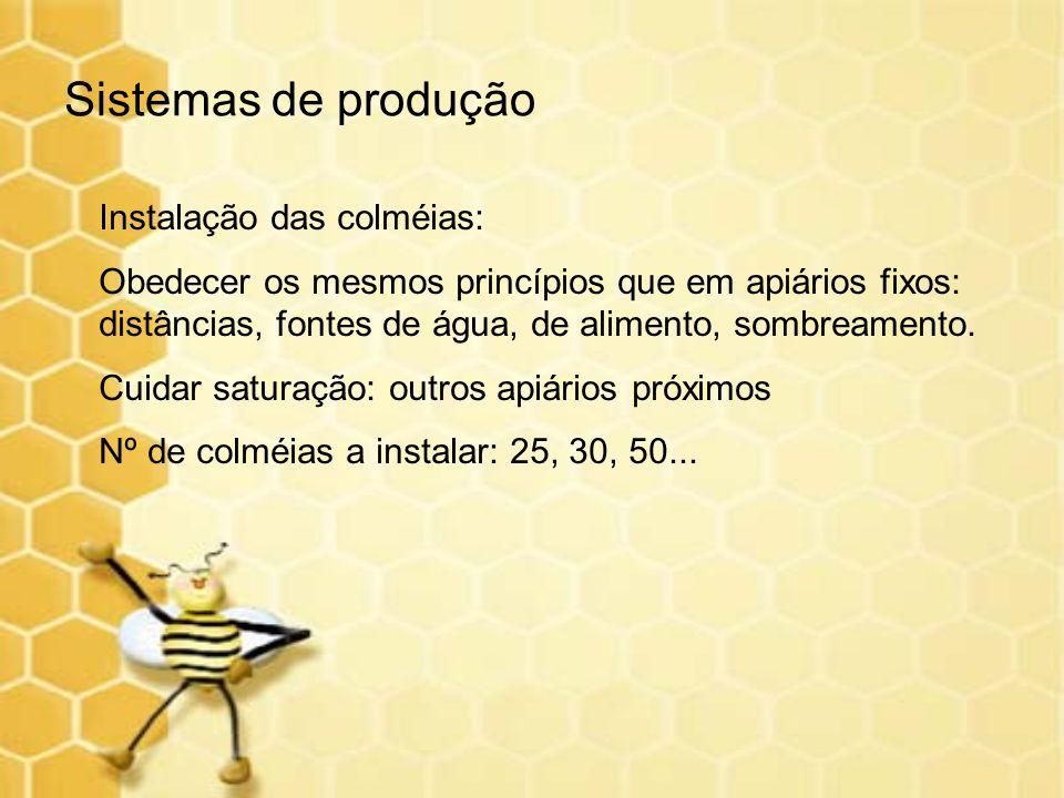 Sistemas de produção Instalação das colméias: Obedecer os mesmos princípios que em apiários fixos: distâncias, fontes de água, de alimento, sombreamen