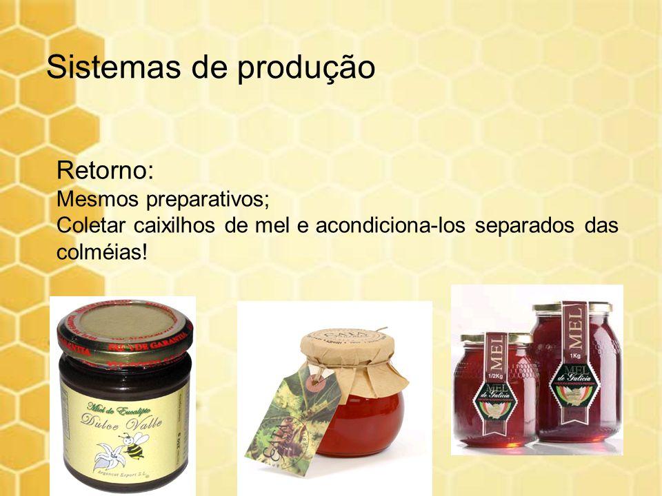 Retorno: Mesmos preparativos; Coletar caixilhos de mel e acondiciona-los separados das colméias! Sistemas de produção