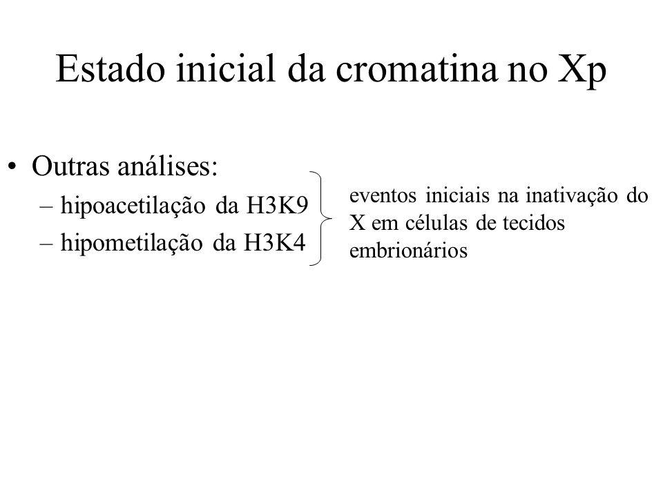 Outras análises: –hipoacetilação da H3K9 –hipometilação da H3K4 Estado inicial da cromatina no Xp eventos iniciais na inativação do X em células de te