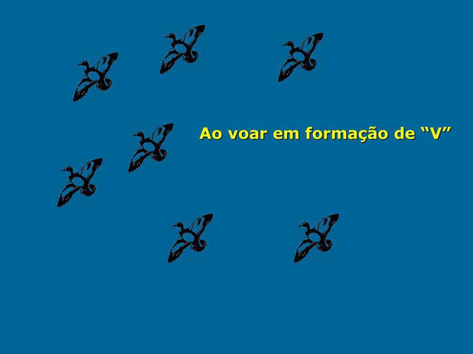 Os gansos voando em formação grasnam para dar coragem e alento aos que vão na frente, para que, assim, mantenham a velocidade.