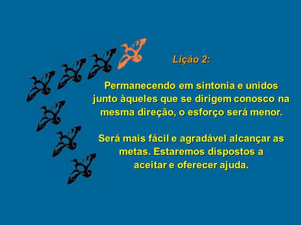 Lição 2: Permanecendo em sintonia e unidos junto àqueles que se dirigem conosco na mesma direção, o esforço será menor.