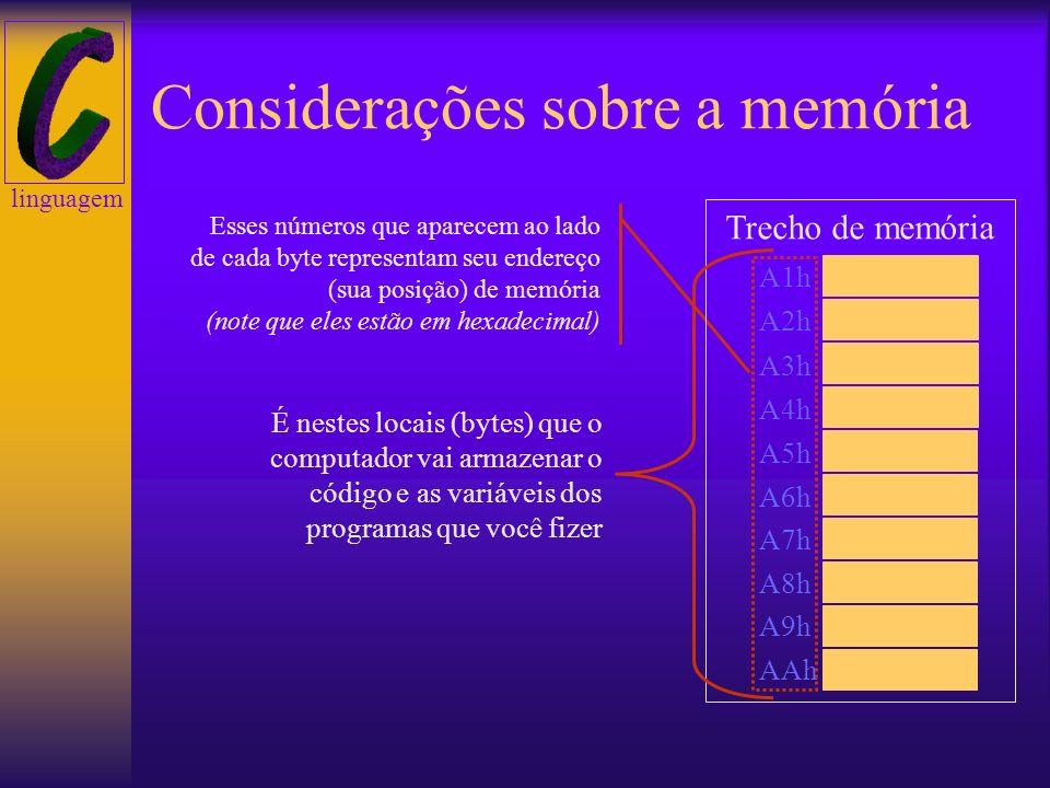 linguagem Considerações sobre a memória O computador possui uma grande capacidade de memória RAM, que o programador pode utilizar em seus programas. P
