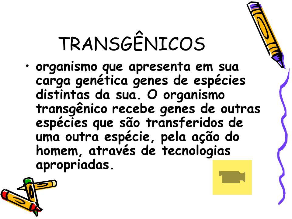 TRANSGÊNICOS organismo que apresenta em sua carga genética genes de espécies distintas da sua. O organismo transgênico recebe genes de outras espécies