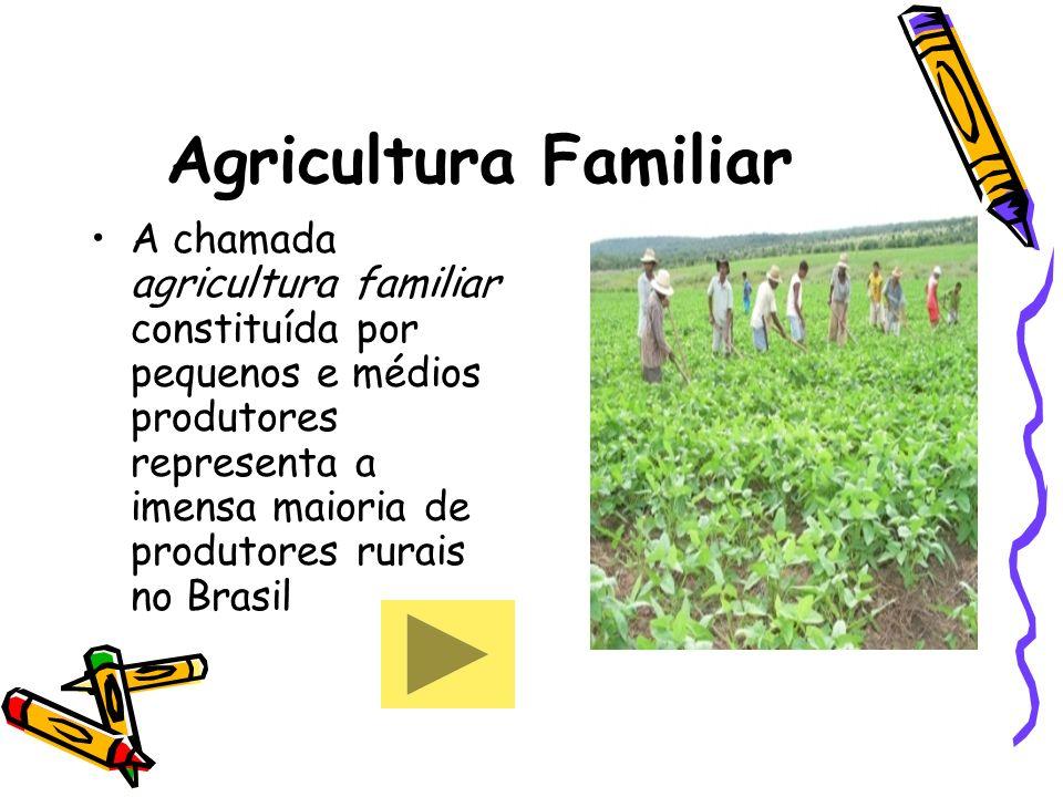 Agricultura Familiar A chamada agricultura familiar constituída por pequenos e médios produtores representa a imensa maioria de produtores rurais no B