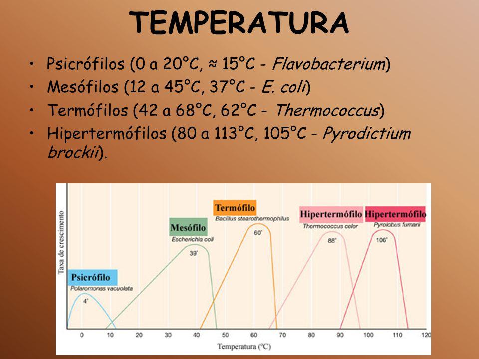 TEMPERATURA Psicrófilos (0 a 20°C, 15°C - Flavobacterium) Mesófilos (12 a 45°C, 37°C - E. coli) Termófilos (42 a 68°C, 62°C - Thermococcus) Hipertermó