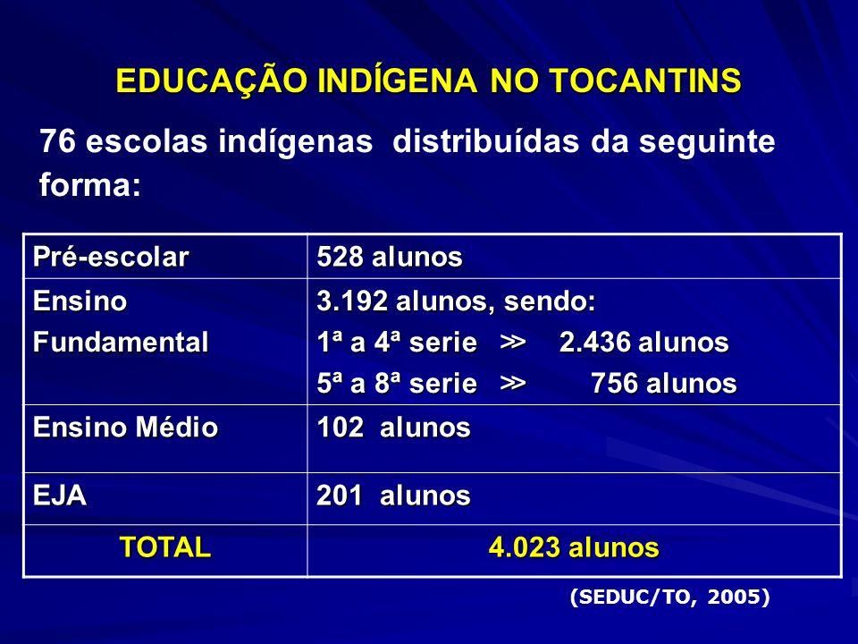 EDUCAÇÃO INDÍGENA NO TOCANTINS 76 escolas indígenas distribuídas da seguinte forma: Pré-escolar 528 alunos EnsinoFundamental 3.192 alunos, sendo: 1ª a