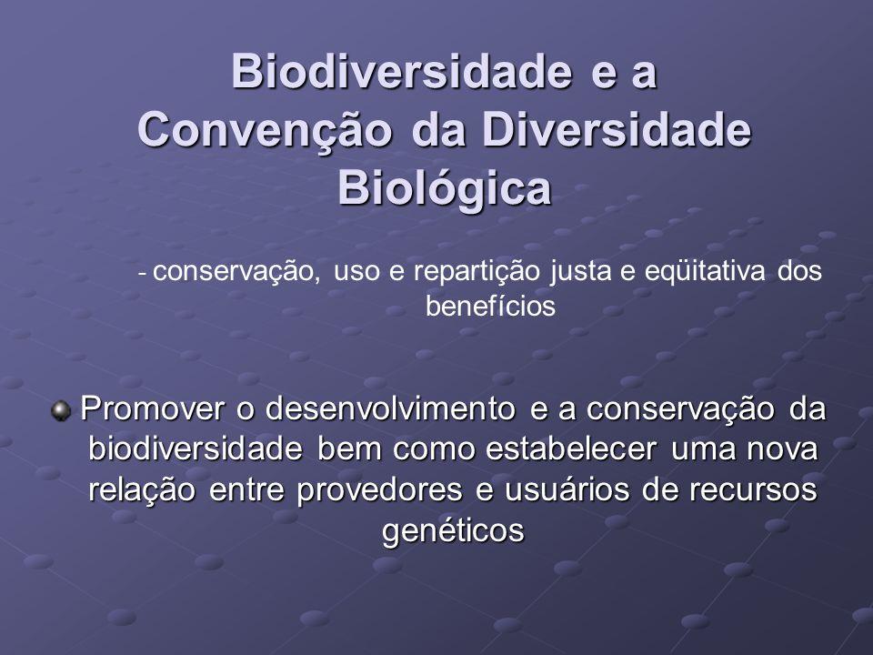 Biodiversidade e a Convenção da Diversidade Biológica - conservação, uso e repartição justa e eqüitativa dos benefícios Promover o desenvolvimento e a