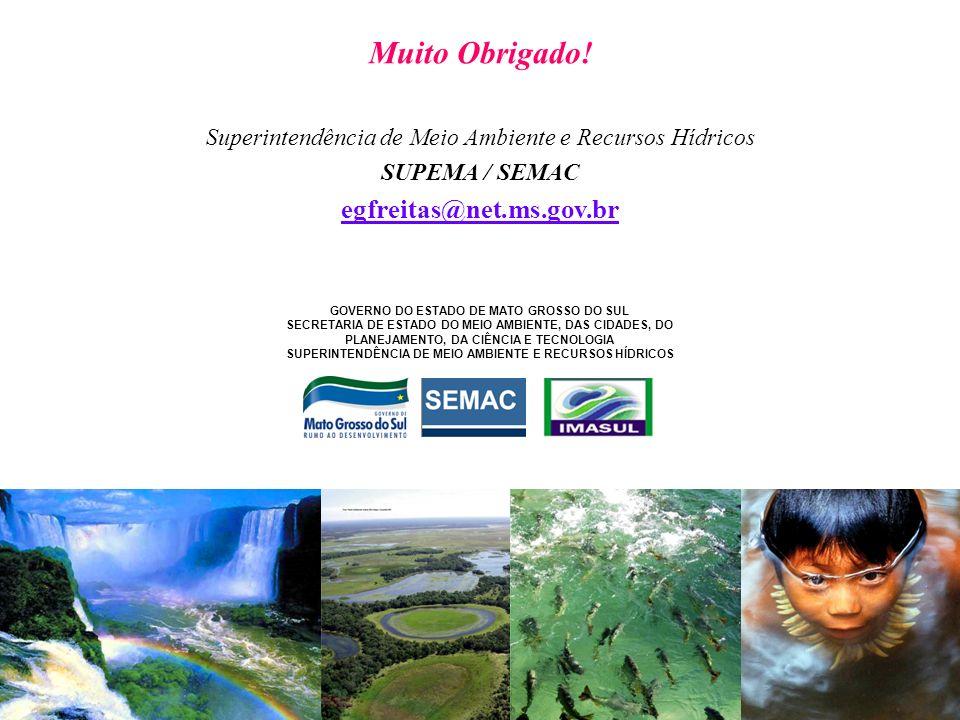 Muito Obrigado! Superintendência de Meio Ambiente e Recursos Hídricos SUPEMA / SEMAC egfreitas@net.ms.gov.br GOVERNO DO ESTADO DE MATO GROSSO DO SUL S