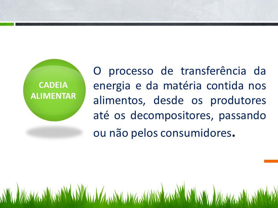 CADEIA ALIMENTAR O processo de transferência da energia e da matéria contida nos alimentos, desde os produtores até os decompositores, passando ou não