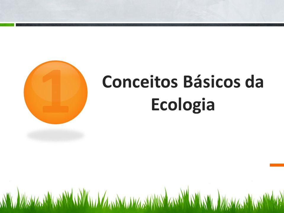 Conceitos Básicos da Ecologia 1