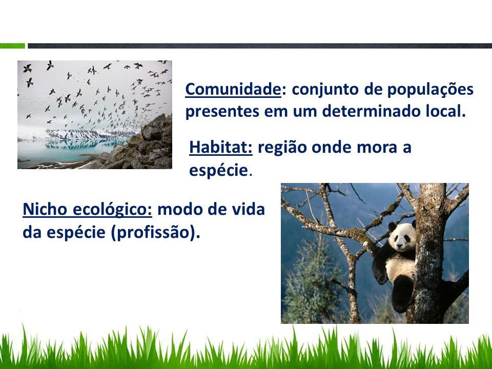 Comunidade: conjunto de populações presentes em um determinado local. Habitat: região onde mora a espécie. Nicho ecológico: modo de vida da espécie (p
