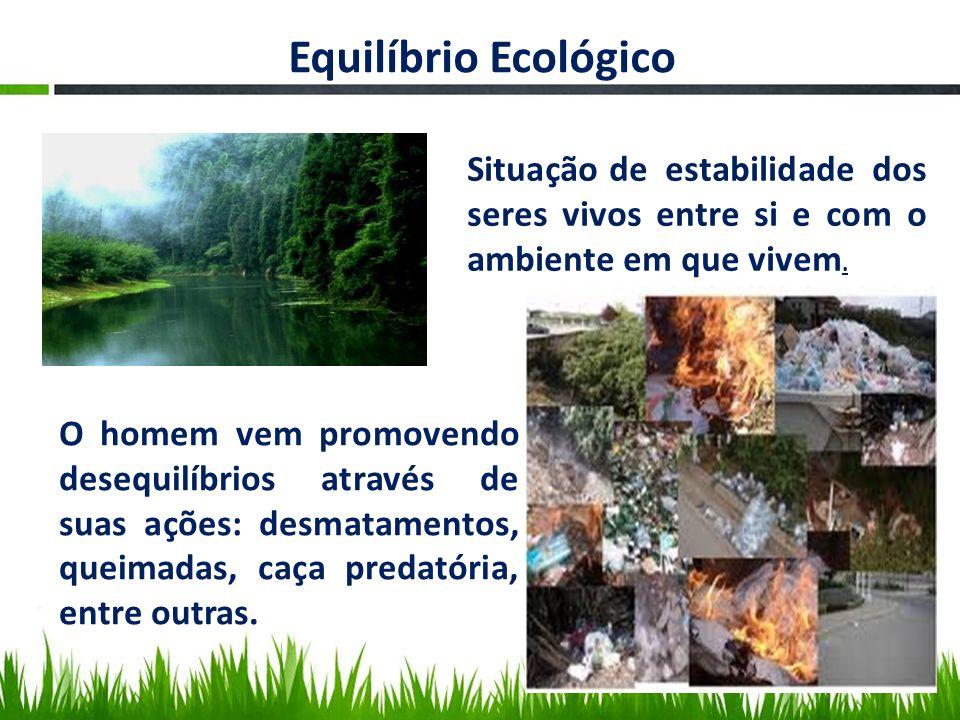Equilíbrio Ecológico Situação de estabilidade dos seres vivos entre si e com o ambiente em que vivem. O homem vem promovendo desequilíbrios através de
