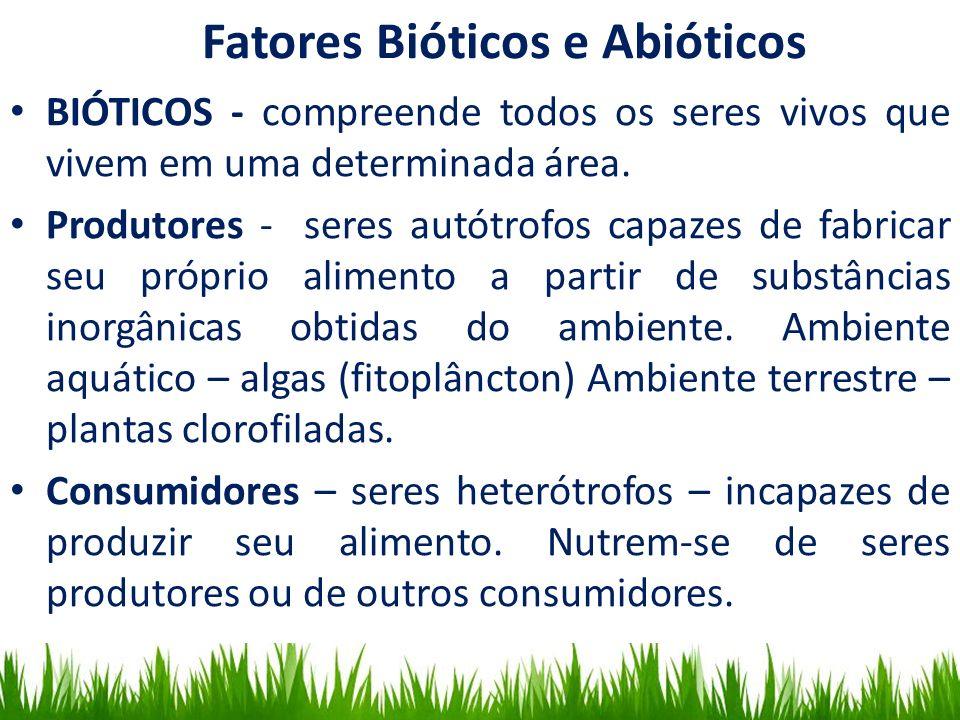 Habitat Fatores Bióticos e Abióticos BIÓTICOS - compreende todos os seres vivos que vivem em uma determinada área. Produtores - seres autótrofos capaz
