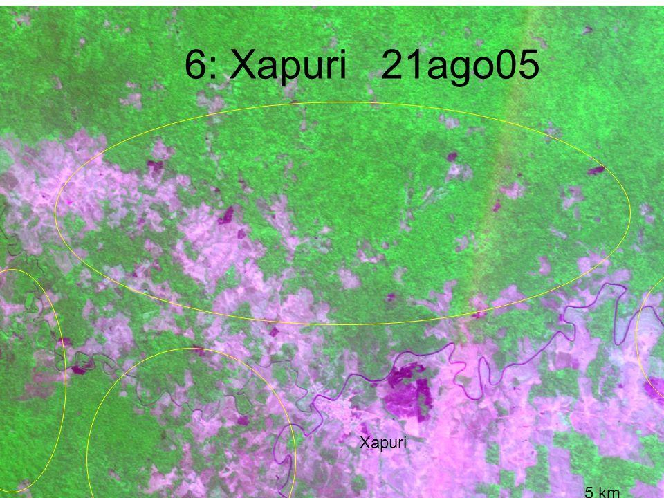 6: Xapuri 21ago05 5 km Xapuri CBERS_180_112 UFAC/PZ/SETEM/WHRC 30out05