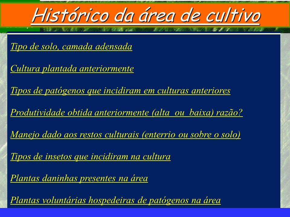 mzuppi.cursos@gmail.com Educação e Treinamento do Homem do Campo Histórico da área de cultivo Tipo de solo, camada adensada Cultura plantada anteriorm