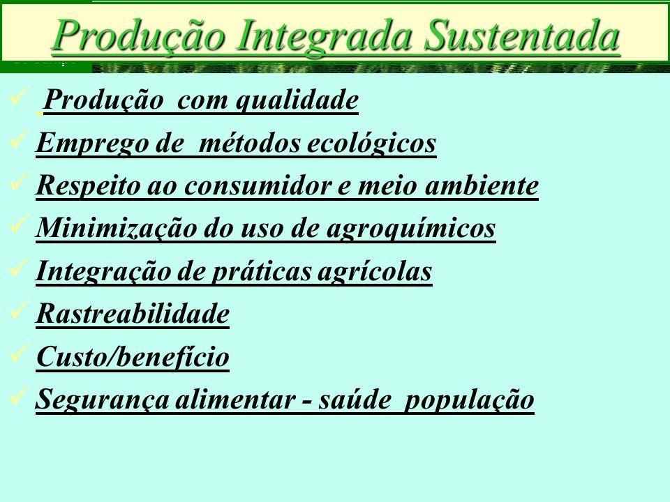 mzuppi.cursos@gmail.com Educação e Treinamento do Homem do Campo Produção Integrada Sustentada Produção com qualidade Emprego de métodos ecológicos Re