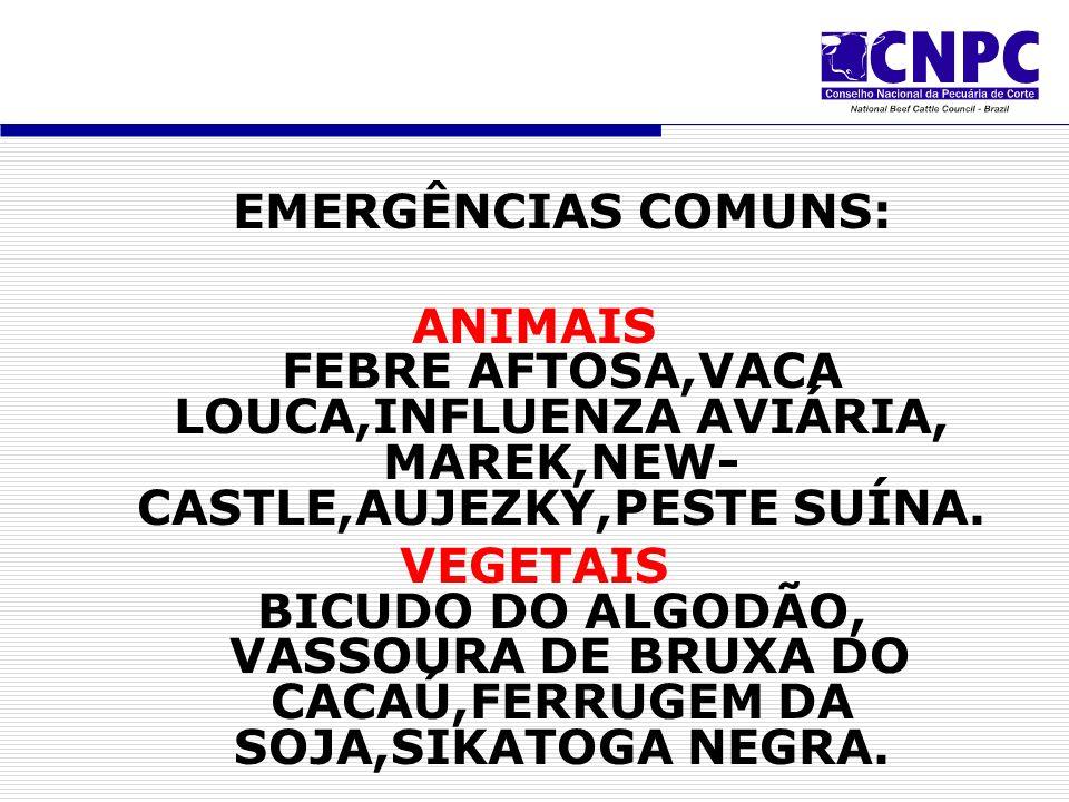 EMERGÊNCIAS COMUNS: ANIMAIS FEBRE AFTOSA,VACA LOUCA,INFLUENZA AVIÁRIA, MAREK,NEW- CASTLE,AUJEZKY,PESTE SUÍNA.