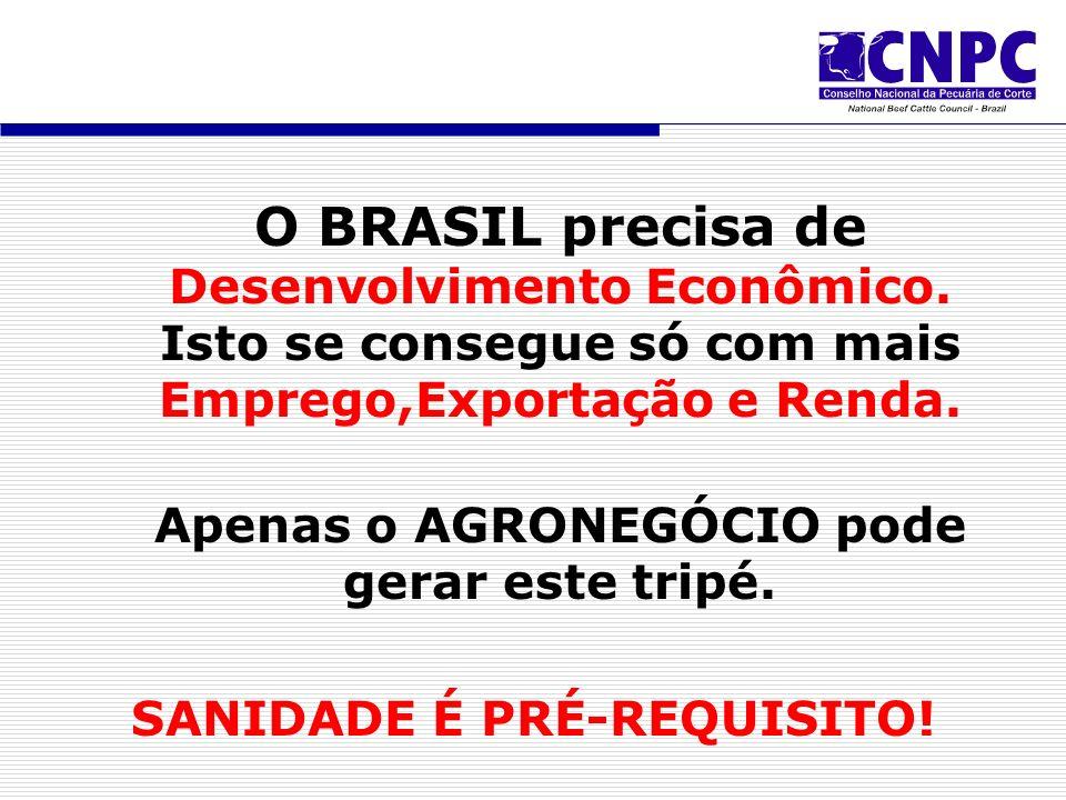O BRASIL precisa de Desenvolvimento Econômico.