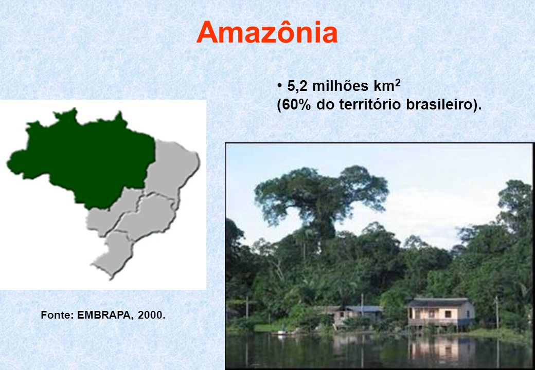 Amazônia 5,2 milhões km 2 (60% do território brasileiro). Fonte: EMBRAPA, 2000.