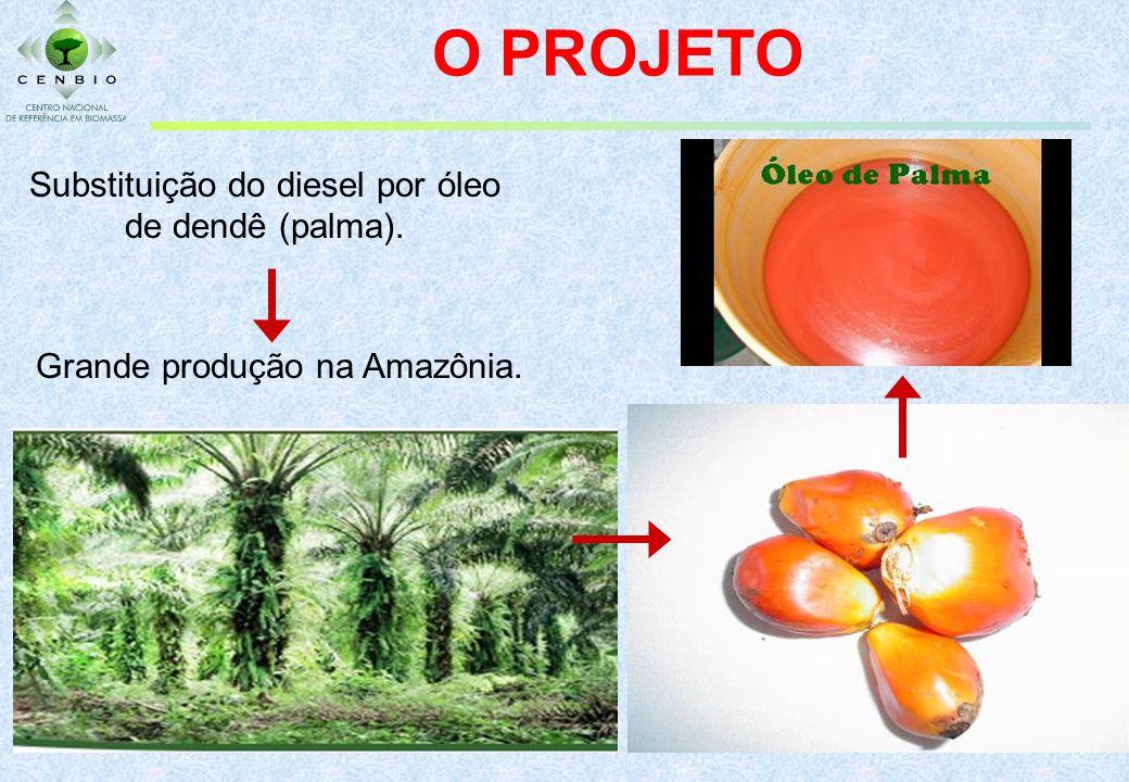 O PROJETO Substituição do diesel por óleo de dendê (palma). Grande produção na Amazônia.