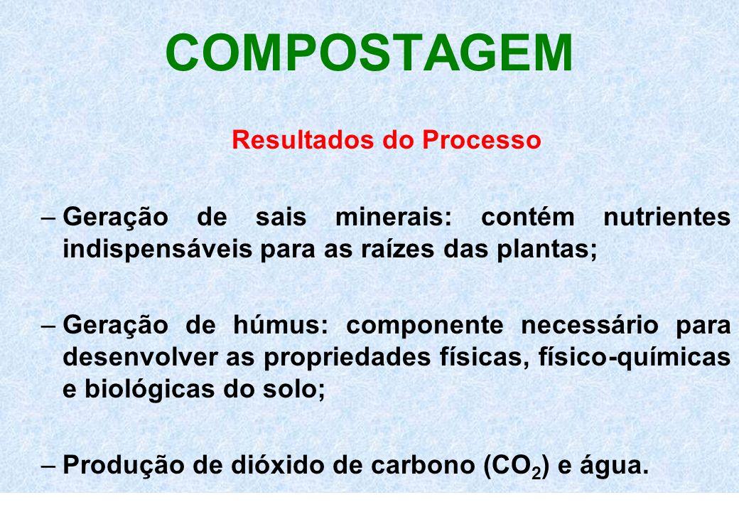COMPOSTAGEM Resultados do Processo –Geração de sais minerais: contém nutrientes indispensáveis para as raízes das plantas; –Geração de húmus: componen