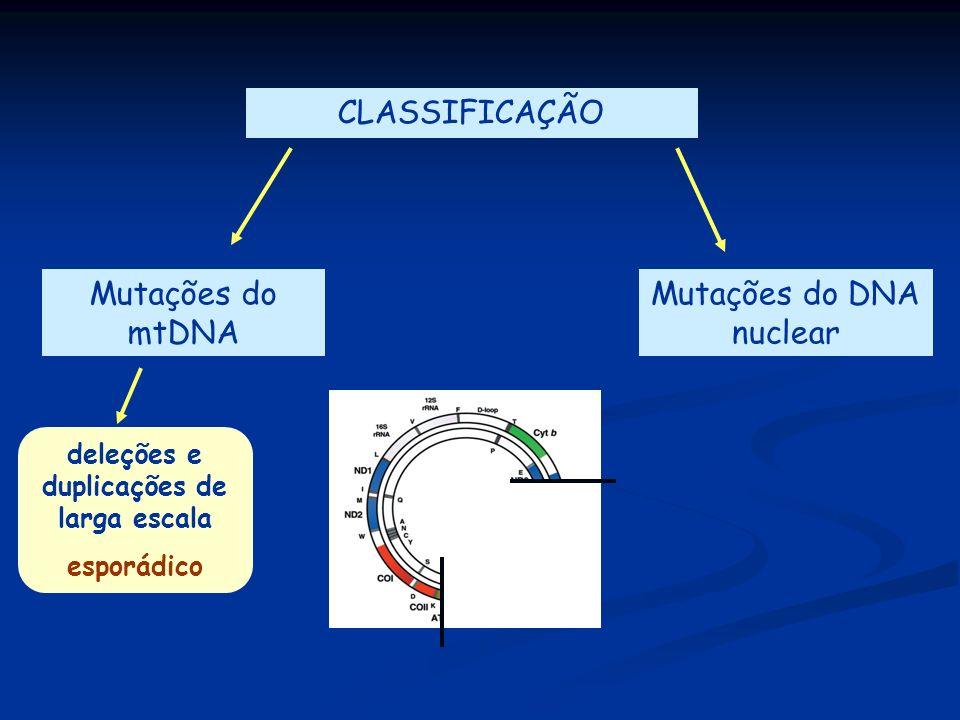 deleções e duplicações de larga escala esporádico CLASSIFICAÇÃO Mutações do mtDNA Mutações do DNA nuclear