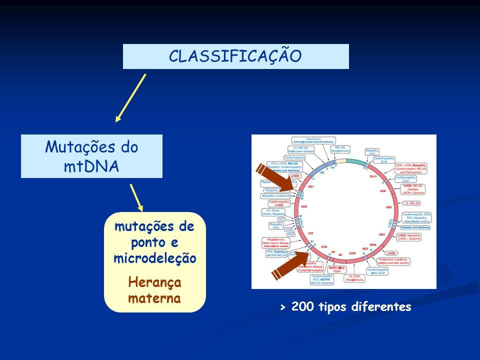 CLASSIFICAÇÃO Mutações do mtDNA mutações de ponto e microdeleção Herança materna > 200 tipos diferentes