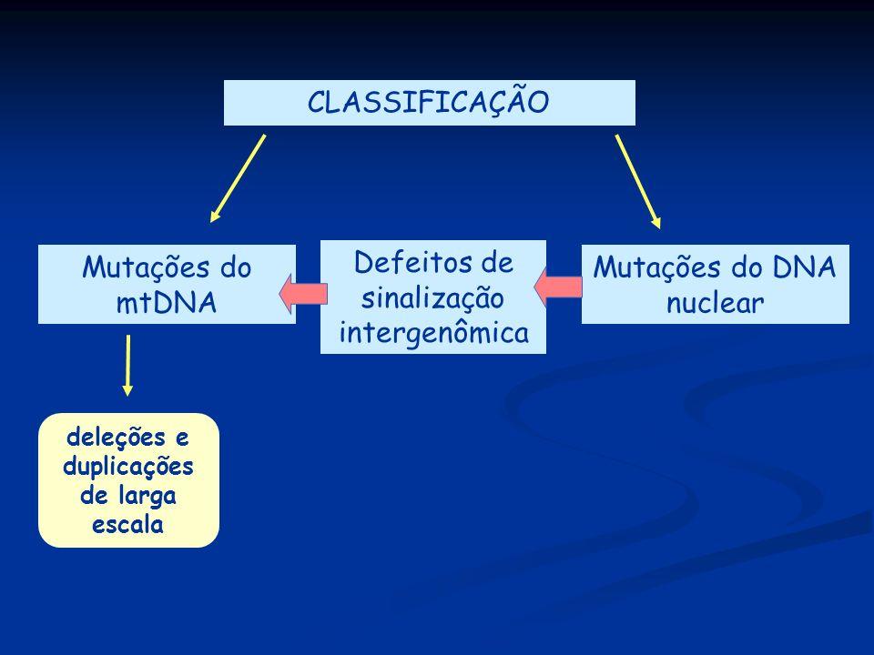 CLASSIFICAÇÃO Mutações do mtDNA Mutações do DNA nuclear Defeitos de sinalização intergenômica deleções e duplicações de larga escala