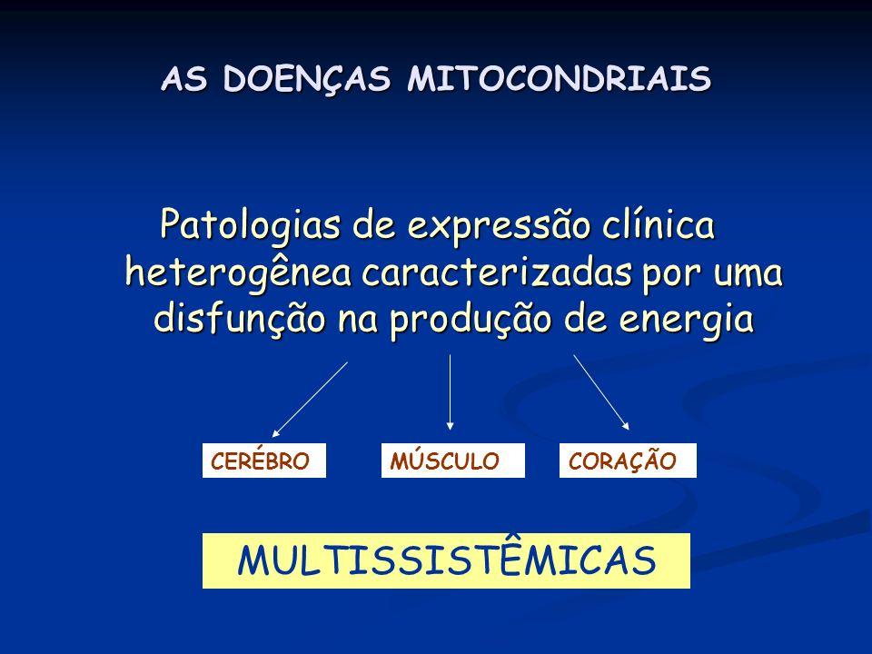 AS DOENÇAS MITOCONDRIAIS Patologias de expressão clínica heterogênea caracterizadas por uma disfunção na produção de energia CERÉBROMÚSCULOCORAÇÃO MUL