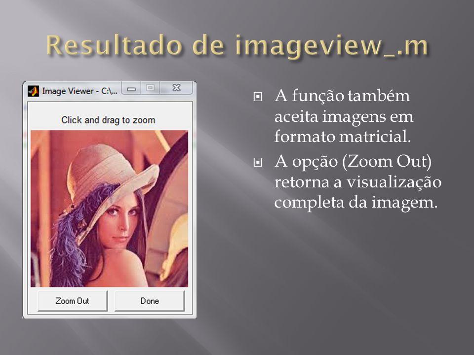 A função também aceita imagens em formato matricial. A opção (Zoom Out) retorna a visualização completa da imagem.
